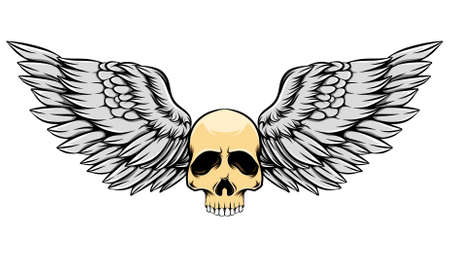The vintage illustration old dead skull with the colored wings
