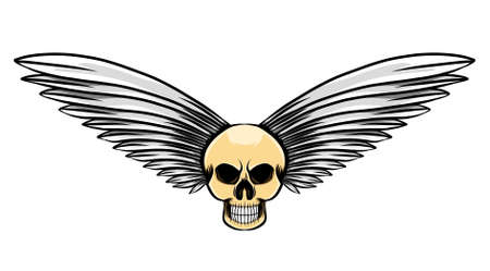 The illustration of the big feather in the vintage dead skull