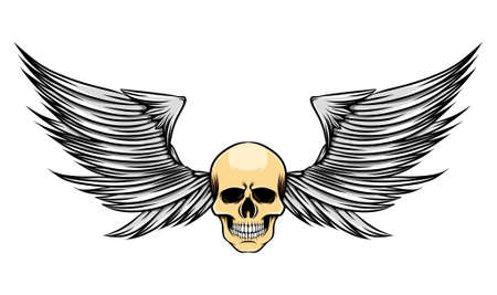 The sharp wings with the skinny head of the dead skull of illustration