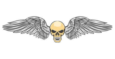 The bikers logo inspiration of the head skull with the dashing wings of illustration Stock Illustratie