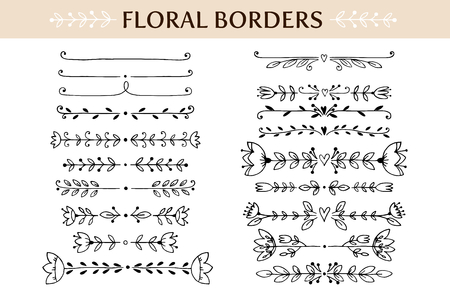 decorative line: Floral vintage borders and scroll elements. Hand drawn vector design elements