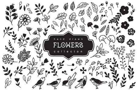 Hand Drawn vintage floral elements.