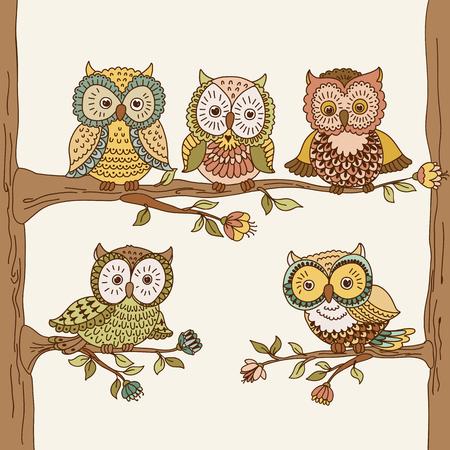 sowa: Zestaw ładny ręcznie rysowane sowy. ilustracji wektorowych
