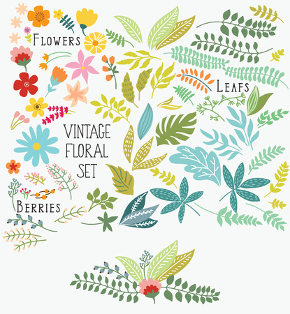 retro flowers: Hand Drawn vintage floral elements. Set of flowers. You can make your vintage floral bouquet