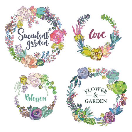 Vector succulent wreaths set. Vintage round frame with cactus and succulents.
