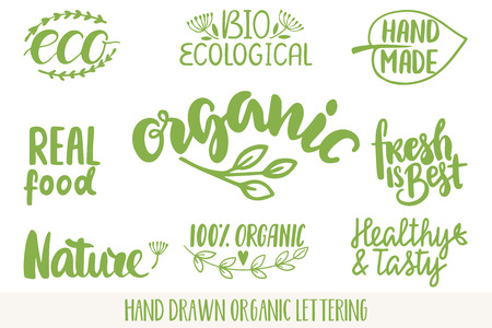 Hand drawn Eco friendly lettering Vectores
