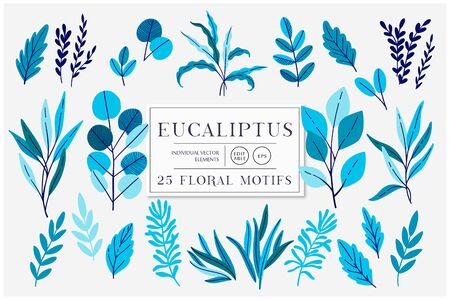 Eucaliptus set isolated on bright background. Vector modern design for t-shirt,print material,cloth and textile. For invite and wedding card,wallpaper,poster,greeting card Иллюстрация