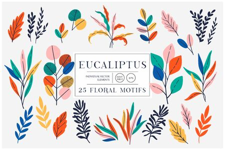 Eucaliptus set isolated on bright background. Vector modern design for t-shirt,print material,cloth and textile. For invite and wedding card,wallpaper,poster,greeting card Фото со стока