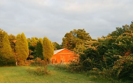 Country landscape with red barn Stock Photo - 1703693