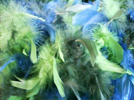 Blue and green feathers