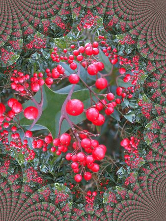 Red berries - fractal