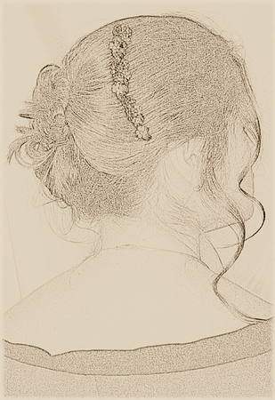 Woman with an evening updo Ilustrace
