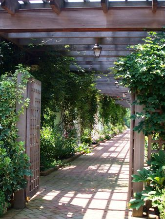 arbor: Arbor walk with climbing plants Stock Photo