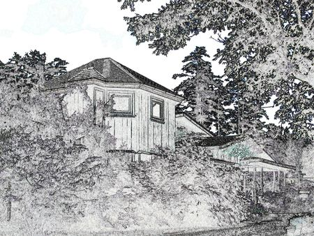 Cabin among trees and shrubs - black and white
