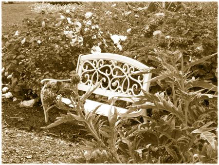 Victorian bench in the garden - sepia Иллюстрация