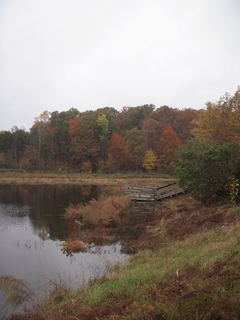 Autumn trees near a lake with an old boat ramp photo