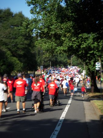September 25, 2010 - Charlotte, NC - Charlotte Heart Walk participants enjoying the perfect weather to walk for a good cause Éditoriale