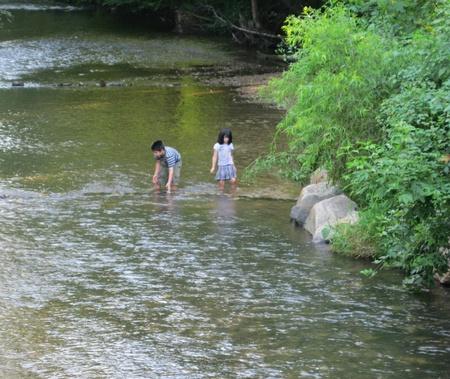 cane creek: Fletcher, NC - August 2, 2011 - Children enjoying the Cane Creek on a hot summer day