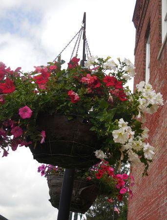 Flower basket Stock Photo - 88608082