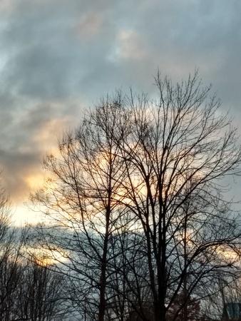 Morning sky Stock Photo - 91616992