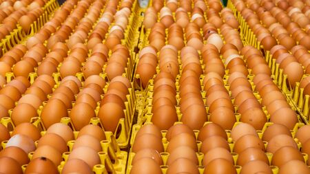 A lot of different color and dirty eggs on a yellow rack ready for sale and distribution Imagens