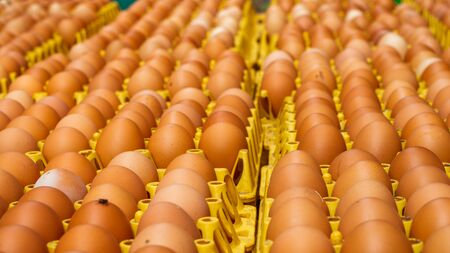 A lot of different color eggs on a yellow rack ready for sale and distribution Imagens