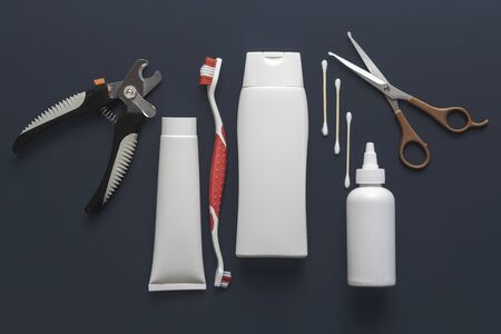 Diverse basic tools for dogs or cats grooming for mock up on a gray blue background