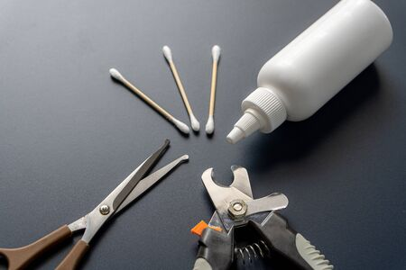 Basic tools for dogs, cats or other pets grooming.