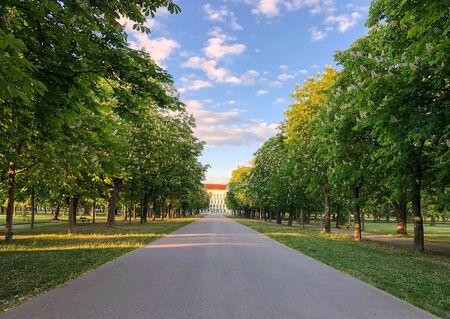 An empty street across a green park in Vienna. Imagens