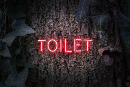 Toilet neon sign in red on a tree trunk with Ivy plant