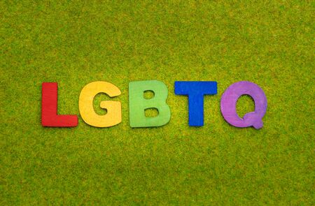 Rainbow wooden alphabet forming the word LGBTQ on a green grass background Imagens