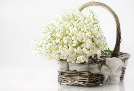 Basket with lilies of the valley on white background  photo