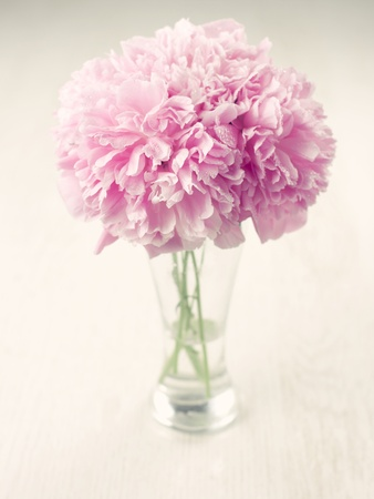Vase of beautiful peony flowers on wooden background Stock Photo