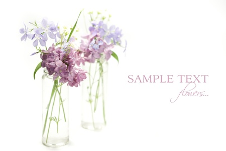 Beautiful spring flowers in a vase on white background photo