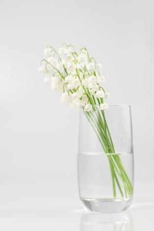Bouquet of lily of the valley in glass vase Stock Photo - 9764693