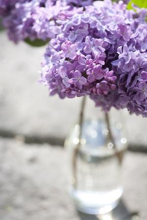 florero: Ramo de violeta lila en un vaso.