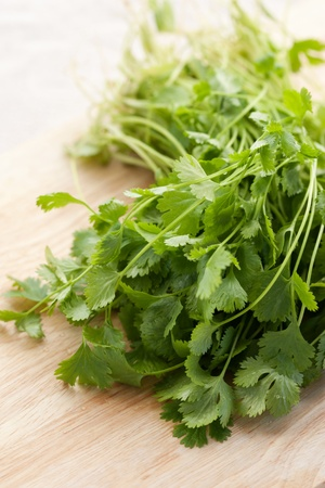кинза: Bunch of fresh cilantro on wooden background