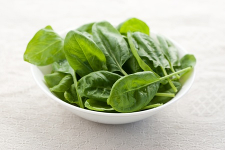 espinacas: Espinacas frescas en un recipiente con fondo blanco