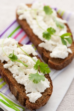 Healthy breakfast, sandwich with cottage cheese and coriander photo
