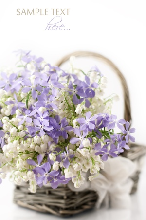 Bouquet of spring flowers in basket on white background Stock Photo - 9764791