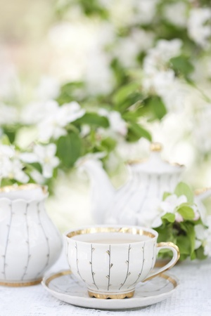 tea kettle: Romantic tea in the blossoming garden