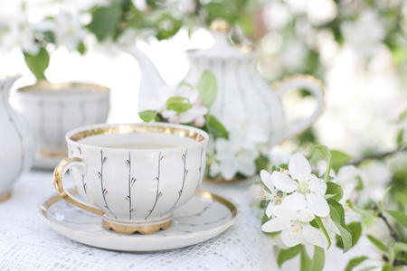 Romantic tea in the blossoming garden photo