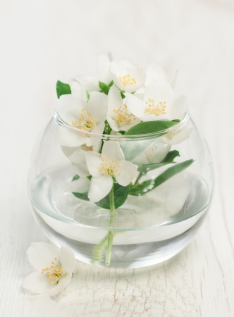 Glass vase with jasmine on wooden background photo