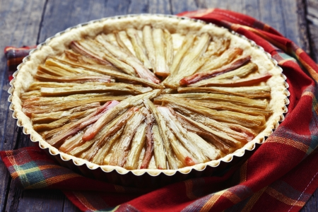 Delicious rhubarb pie on rustic background Stock Photo - 17925517