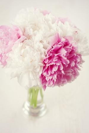 Vase of beautiful fresh peony flowers Stock Photo - 17925505