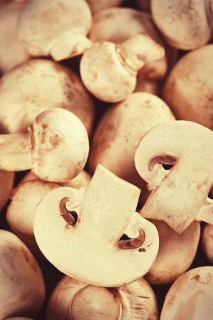 Close up of fresh raw mushrooms Stock Photo - 17925512