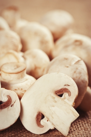 Close up of fresh raw mushrooms Stock Photo - 17925508