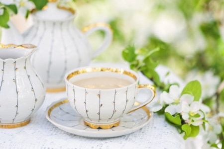 high tea: English tea in spring garden