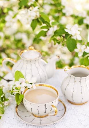 English tea in spring garden photo