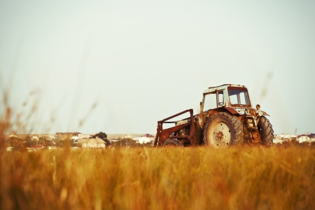 old tractors: Old tractor in the yellow field